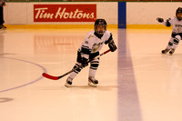 Game 1 Mite A TCYH vs. Livingston